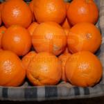 meyve meyva fotoğraf çekimi (40)