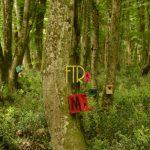 fotografci-etkinlik-orman